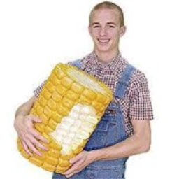Avatar of user Kernels Of-corn