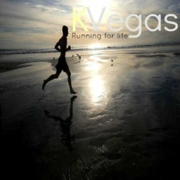 Cover of track Runnig for Life by Karl Vegas