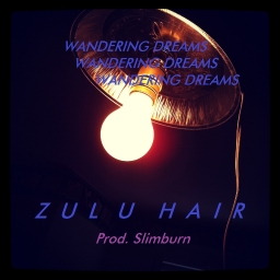 Avatar of user Zulu Hair
