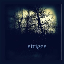 Cover of track striges by dronealpha