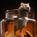 Cover of track Mouse in the jar by Netrino1111
