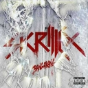Cover of track skrillex scary monsters and nice sprintes dj rulo remix by dj rulo