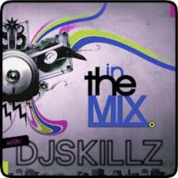 Avatar of user DJ skillz