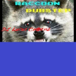Cover of track Raccoons! by DJ Lucky Ch@rms