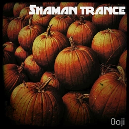 Cover of track Shaman Trance by Ooji