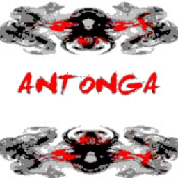 Avatar of user ANTONGA R