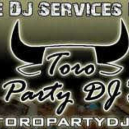 Cover of track DJ Toro Rave Party by DJ Toro