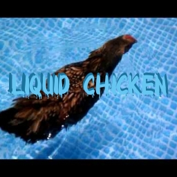 Avatar of user LiquidChicken