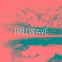 Cover of track Trillwave by andylane