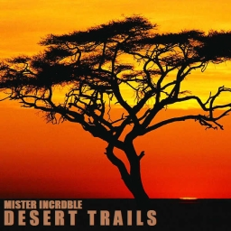Cover of track Desert Trails (Mister Incrdble Remix) by Mister Incrdble
