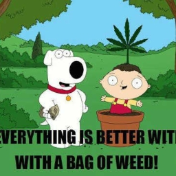Cover of track family guy bag of weed mix by Patrick Donahue