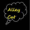 Cover of track The Legend of Zelda Main Theme (Alley Cat Remix) by Alley Cat