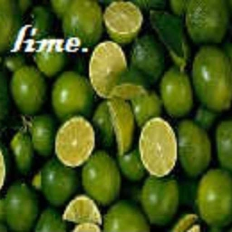 Cover of track lime. by no more