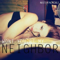 Cover of track Won't You Be My Neighbor? by Mister Incrdble