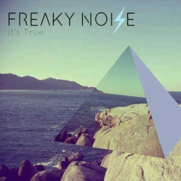 Cover of track It's True by Freaky Noize