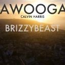 Cover of track Calvin Harris - Awooga (BrizzyBeast Remix) by DELETED
