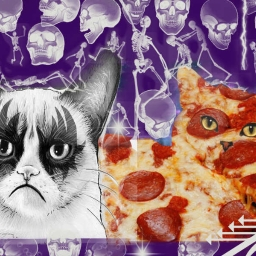 Cover of track Grumbles The Cat versus Pizza Kitty (To The Death) by soniktruth