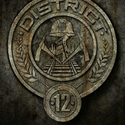 Cover of track The other side of District 12 by SBDandMSM