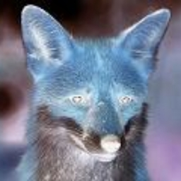 Avatar of user the ethereal  fox