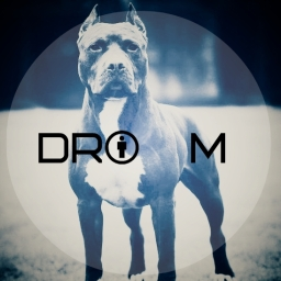 Avatar of user Drom