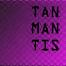Cover of track a man a plan a canal panama by Tanmantis