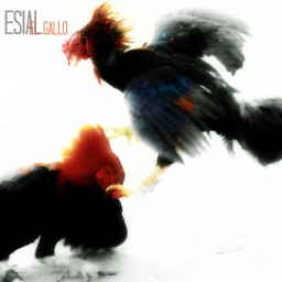 Cover of track DEATH by ROOSTER ESIAL
