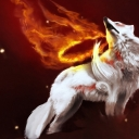 Avatar of user Amaterasu