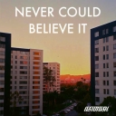 Cover of track Never Could Believe It by Aviddly