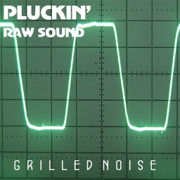 Cover of track Pluckin' by Raw Sound