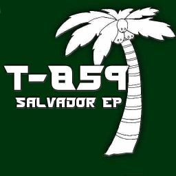 Cover of track Salvador (Transmorphics Remix) by Esque (Transmorphics)