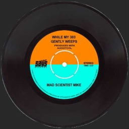 Cover of track While My 303 Gently Weeps by Mad∞Scientist∞Mike