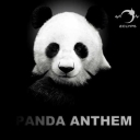 Cover of track Panda Anthem by é1000