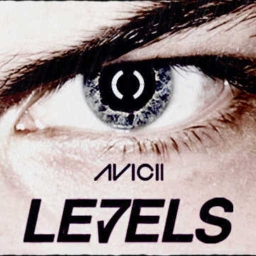Cover of track Levels - Avicii by KroniX