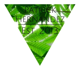 Avatar of user Patrick Hernandez
