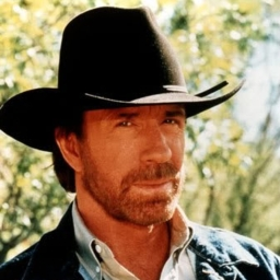Avatar of user Chuck Norris