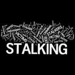 Cover of track STALKING by Sceptikk
