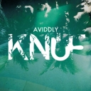 Cover of track Knuf by Aviddly