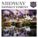 Cover of track Midway - Monkey Forest (byniare remix) by Zbigniew Frajnt