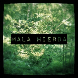 Cover of track mala hierba by NAK