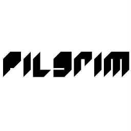 Cover of track Crash by Pilgrim