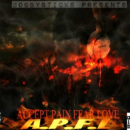 Cover of track A.P.F.L  ( INTRO ) by Bobbysticks