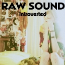 Cover of album Introverted by Raw Sound