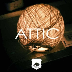 Cover of track Attic - Trouble In Town by naut