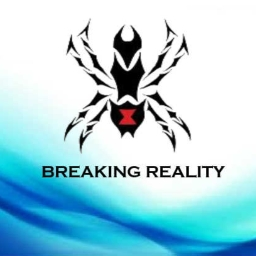 Cover of track Breaking Reality by Spyder