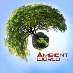Cover of track Tommy Leadfront - Ambient World by VANDAL STREET