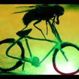 Cover of track Fly on a bike by matadorelov