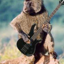 Baboon Bass ( Sound test ) by roobarb - Audiotool - Free