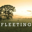 Cover of track Fleeting by Synergy