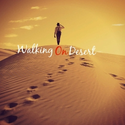 Cover of track Walking On Desert by GrizzlyBeats