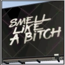 Cover of album Smell Like a Bitch - Single by Diverse Pony